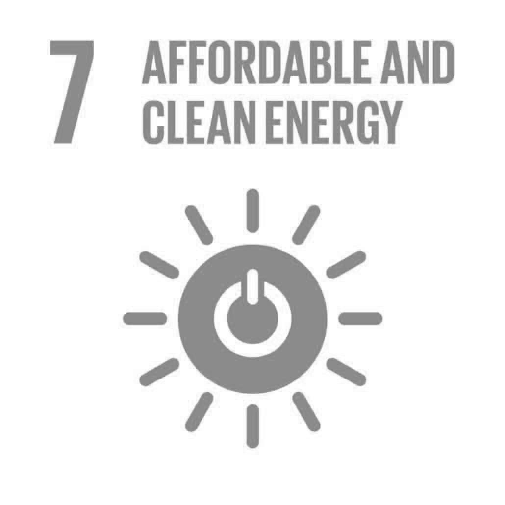 The Global Goals 7