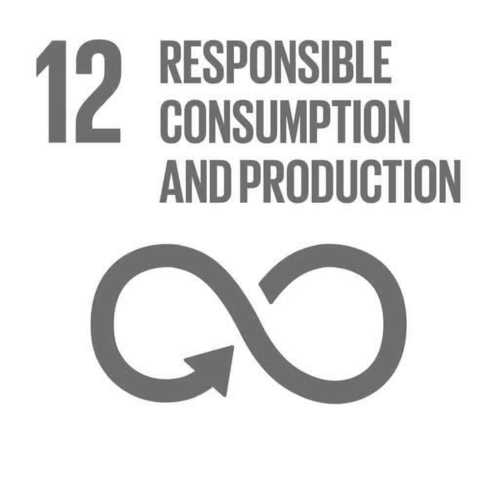 The Global Goals 12