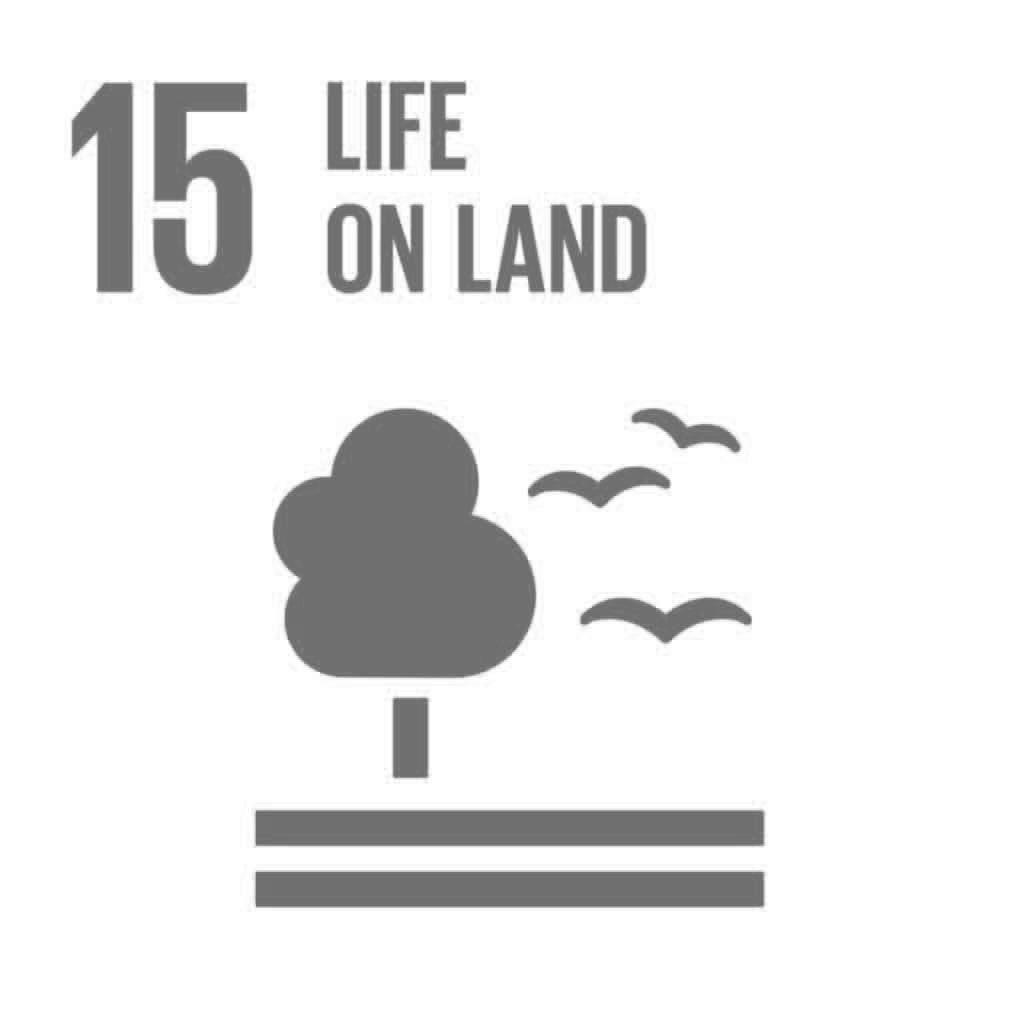 The Global Goals 15